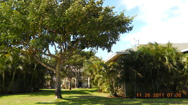 Piilani Garden Apartments