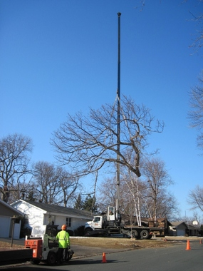 Arbortech Stump And Tree Removal
