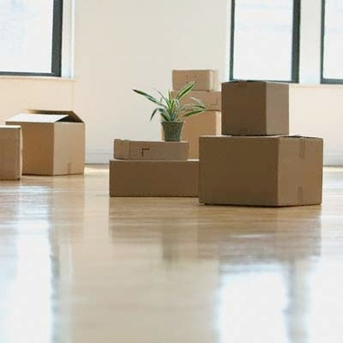 San Antonio Office And Apt Movers