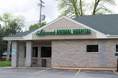 Dhillon, Vic, DVM Advanced Animal Hospital
