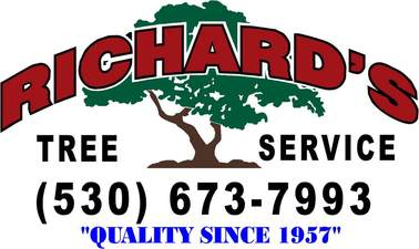 Richard&#039;s Tree Service Inc
