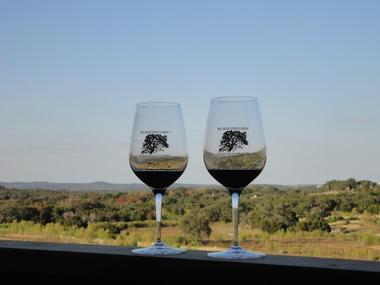 Grape Expectations: Take a Wine Tour Through Fredericksburg, Texas